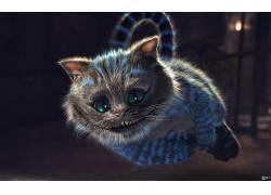 柴郡猫,爱丽丝漫游仙境,动物,幻想艺术76427