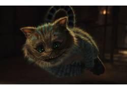 柴郡猫,爱丽丝漫游仙境,幻想艺术,动物25393