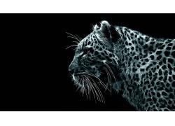 豹,黑色的背景,Fractalius,动物,数字艺术,简单的背景,豹(动物)