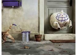 动物,门,狗,猫,油漆飞溅,微笑,笑脸,狗门,油漆罐265847