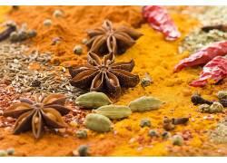 草本植物,辣椒,辣椒,餐饮,宏440284图片