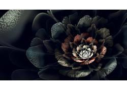 抽象,分形,分形花,数字艺术,花卉,植物137420图片