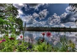 河,壁纸,花卉,数字艺术,水,植物,云,树木5246图片