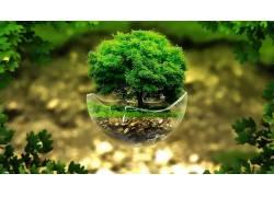 壁纸,绿色,树叶,植物,数字艺术,浮岛,树木,玻璃,破碎,领域,草,岩1图片