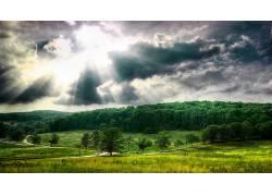 壁纸,植物,森林,阳光633502图片