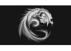 极简主义,灰色背景,头骨,数字艺术,动物,牛角,尾巴,牙,单色180940图片