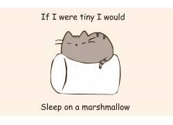猫,棉花糖,艺术品,活版印刷,极简主义,幽默,动物352653图片