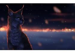 猫,猞猁,动物,发光的眼睛,艺术品25531