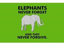 画画,象,极简主义,幽默,活版印刷,绿色背景,动物103333图片