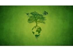 树木,壁纸,绿色,鸟类,行星,非洲,艺术品,画画,极简主义,植物,木,