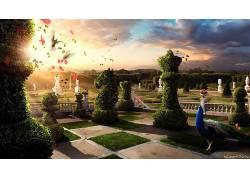 棋,花园,孔雀,鸟类,对冲,幻想艺术,数字艺术,植物5303图片