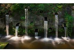 水,绿色,植物357564