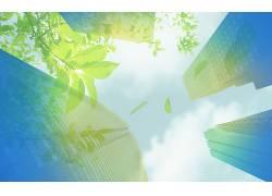植物,画画,建造,树叶,摩天大楼,天空330480