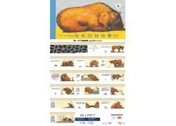 《棕熊的神奇事》绘本故事ppt图片