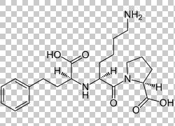 雷米普利药物酶抑制剂羧酸结构,配方PNG剪贴画杂项,角度,白色,文