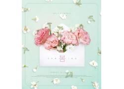 花卉贺卡韩文春天海报