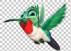 谷歌蜂鸟,蜂鸟PNG剪贴画儿童,动物,演示文稿,动物群,鸟,盛大盗窃