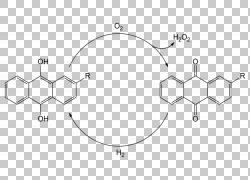 过氧化氢氧化还原EUR2,处理PNG剪贴画角度,白色,文本,其他,对称性