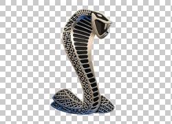 福特野马SVT眼镜蛇谢尔比野马AC眼镜蛇汽车福特谢尔比眼镜蛇概念,