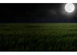 100453,地球,月球,领域,夜晚,壁纸图片