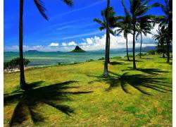 101179,地球,海滩,壁纸图片
