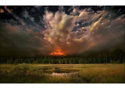 105869,地球,风景优美的,天空,云,暴风雨,黑暗,领域,森林,日落,壁图片