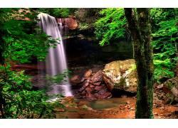 105872,地球,瀑布,瀑布,森林,宾夕法尼亚州,岩石,蕨,水,壁纸图片