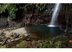 105882,地球,瀑布,瀑布,森林,蕨,岩石,水,壁纸图片