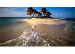 101506,地球,海滩,雷猫,壁纸图片