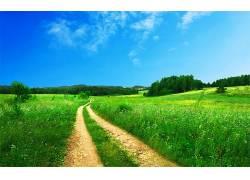 103147,地球,风景,领域,路,小路,草,自然,草地,壁纸