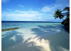 101691,地球,海滩,壁纸图片