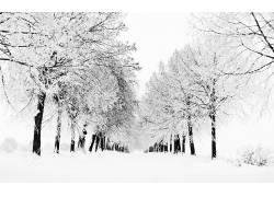 106466,地球,冬天的,壁纸图片