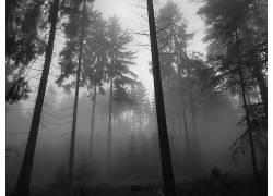 106501,地球,雾,壁纸图片