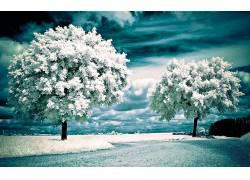 106514,地球,风景优美的,冬天的,雪,壁纸图片