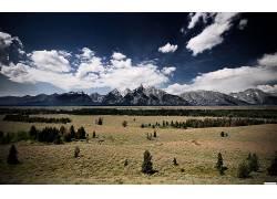 107399,地球,风景,领域,山,草,小山,天空,云,树,壁纸