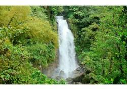 104236,地球,瀑布,瀑布,森林,岩石,壁纸图片