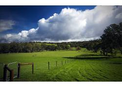 104298,地球,领域,栅栏,牛,羊,旋转,小山,云,蓝色,天空,澳大利亚,图片