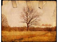 10656,地球,艺术的,树,黑色,白色,壁纸图片