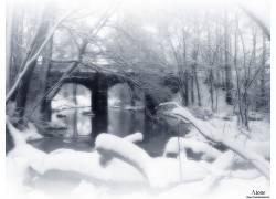 10732,地球,冬天的,河,雪,桥梁,树,壁纸图片
