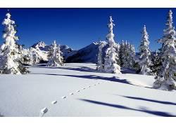 109983,地球,冬天的,壁纸图片