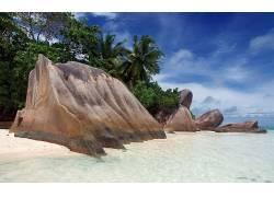 104196,地球,海滩,岩石,手掌,树,树,塞舌尔,壁纸图片