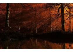 102212,地球,风景优美的,树,黑暗,秋天,壁纸图片