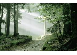 104508,地球,雾,壁纸图片