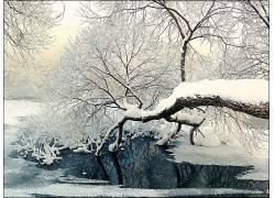 寒冷的冬天风景图片