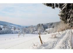 104949,地球,冬天的,壁纸图片