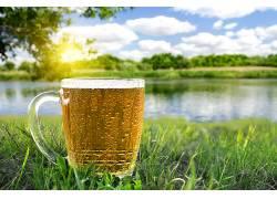 723437,食物,啤酒,玻璃,壁纸
