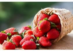 760880,食物,草莓,水果,浆果,水果,篮子,壁纸