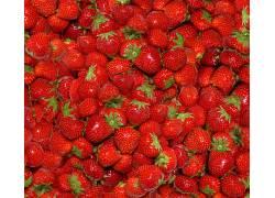 749359,食物,草莓,水果,水果,浆果,壁纸