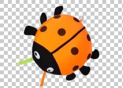 瓢虫甲虫竹炭活性炭,瓢虫PNG剪贴画手绘,手,橙色,昆虫,汽车,卡通,