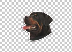 黑色和Tan Coonhound Rottweiler狗品种口鼻部,rottweiler PNG剪